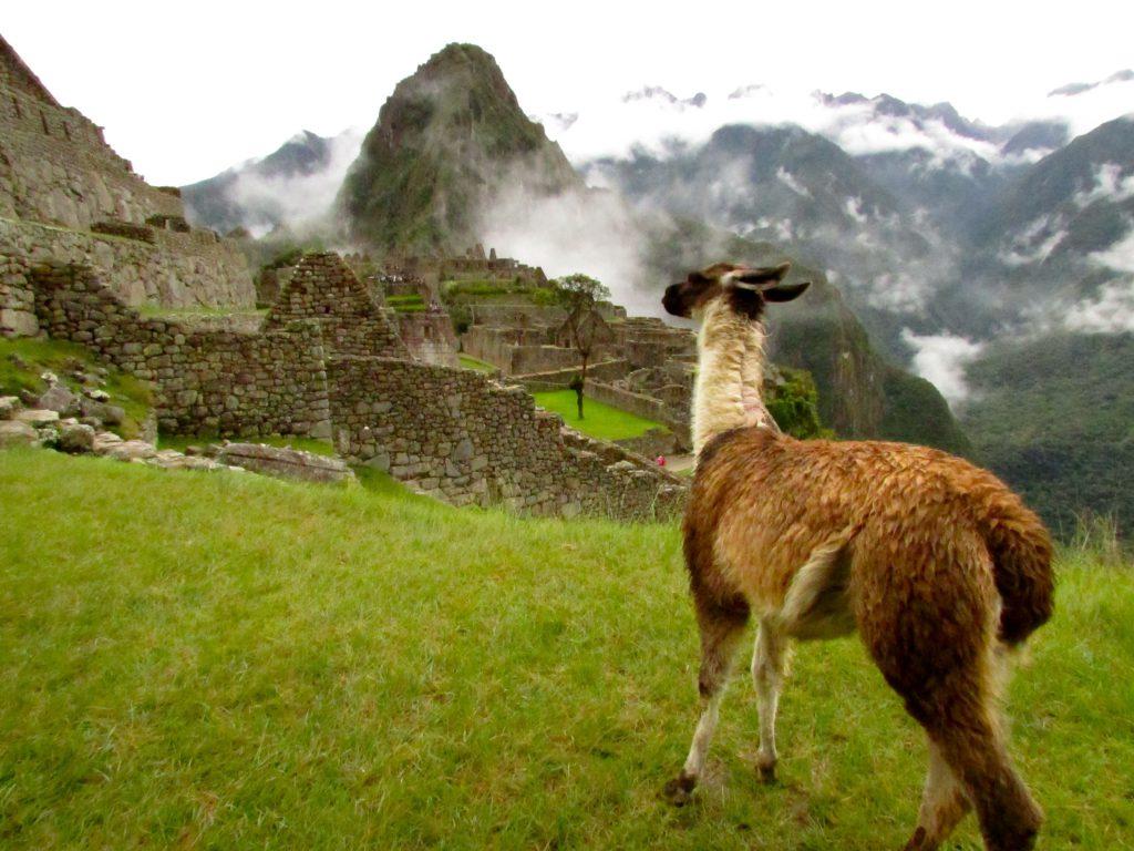 The Best of Peru Machu Picchu Peru