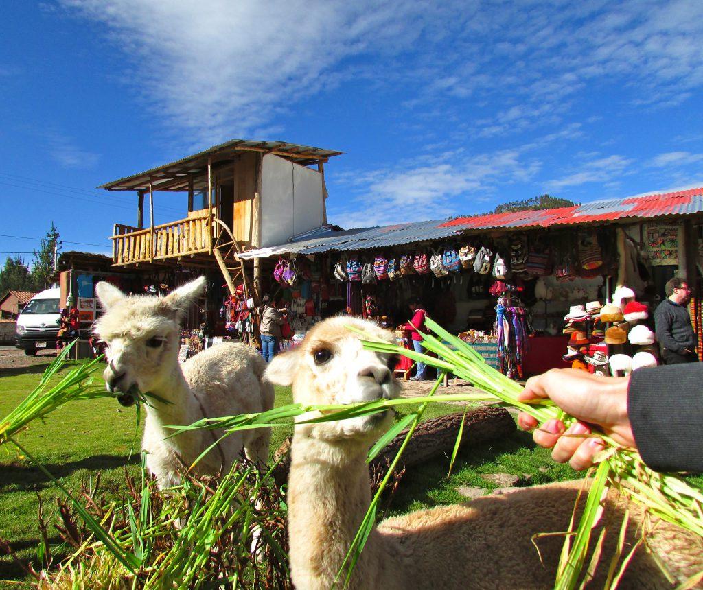 The Best of Peru