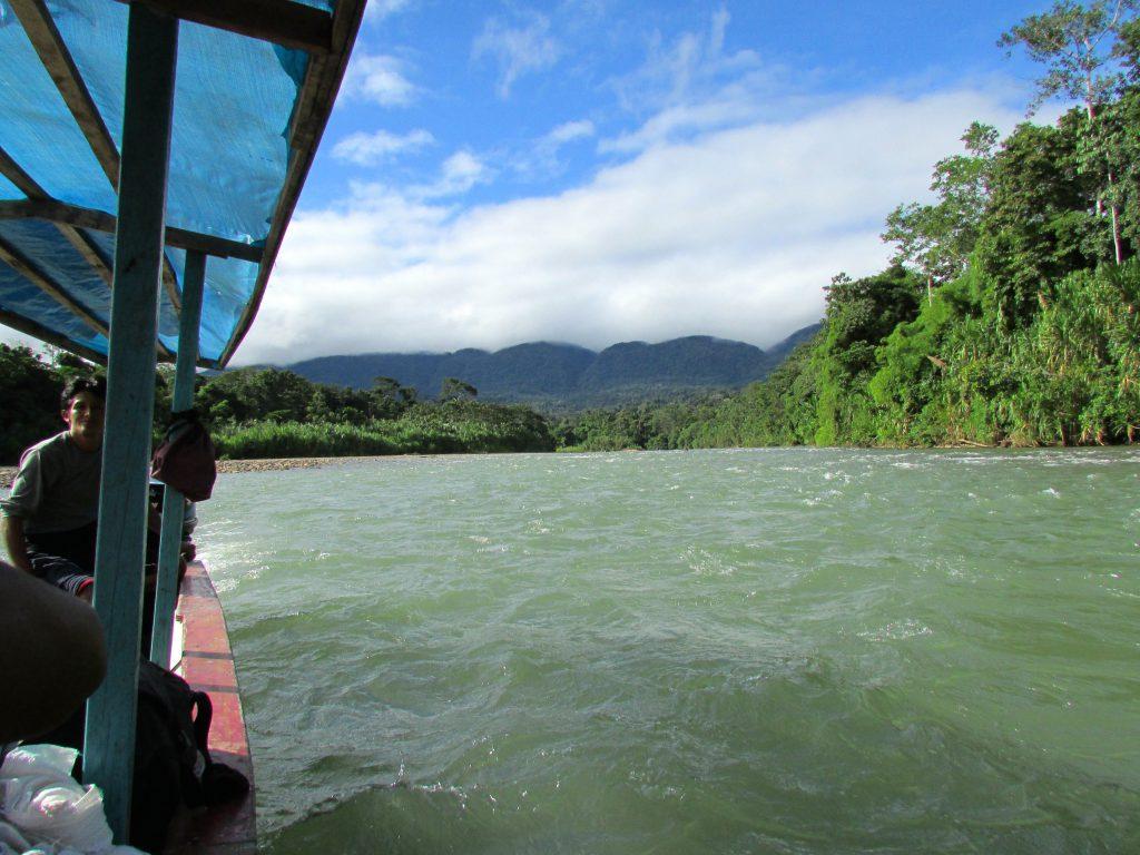 Manu National Park Peru