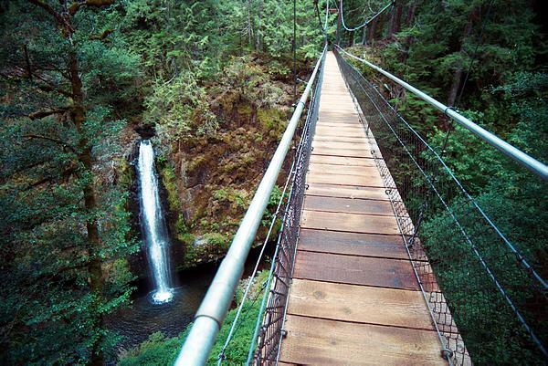 Oregon Coast Road Trip