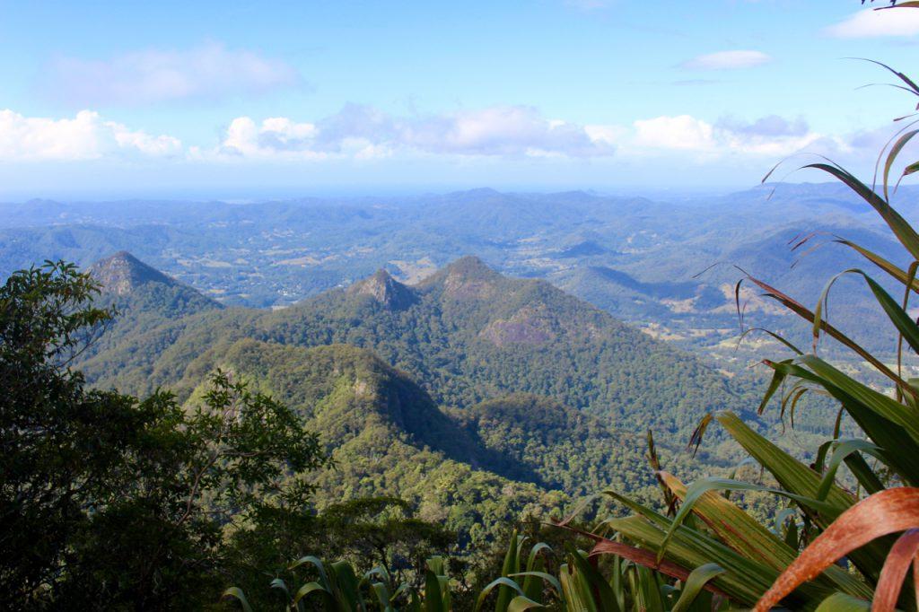 Hiking Mount Warning
