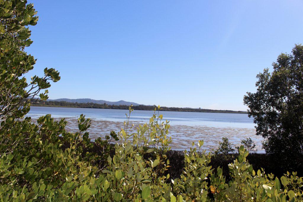 Coombabah Lakelands Conservation Area