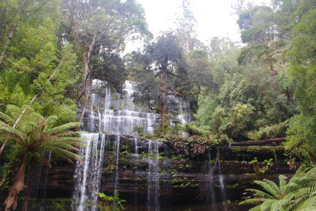 Russell Falls, Mount Field National Park - Tasmania