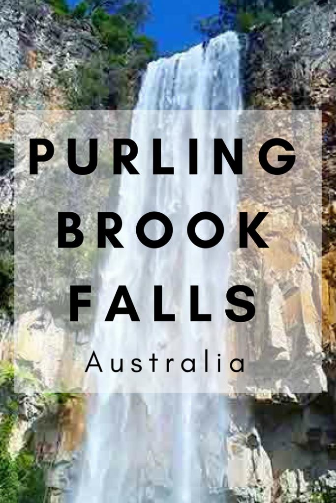 Purling Brook Falls Springbrook Australia