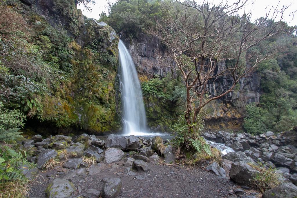 North Island New Zealand Road Trip Itinerary