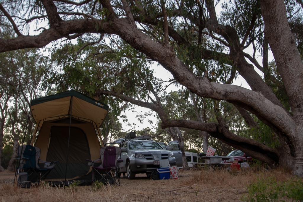 A guide to visiting and camping at the Pinnacles